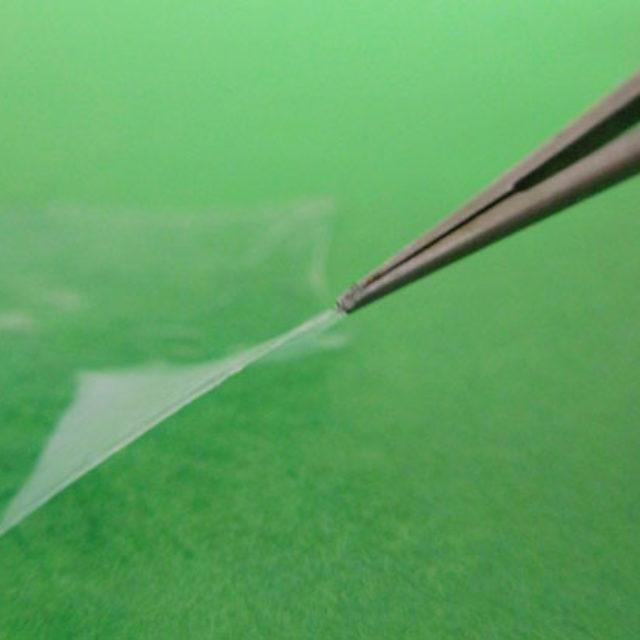 Супер-щільні трансплантати амніотичної мембрани як альтернатива для реконструкції очної поверхні