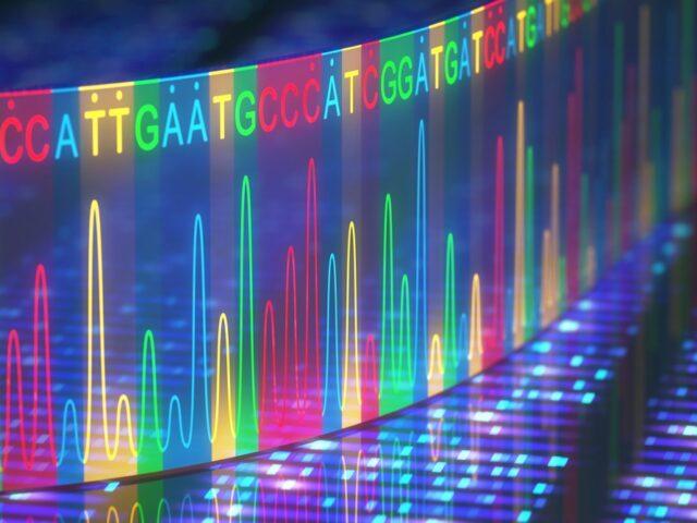 Знайдені нові генетичні фактори, які впливають на розвиток міопії