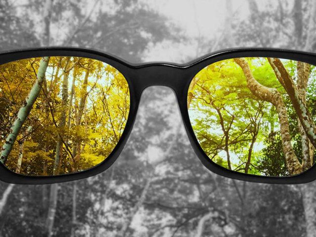 Новий метод лікування кольорової сліпоти успішно пройшов тестування на пацієнтах