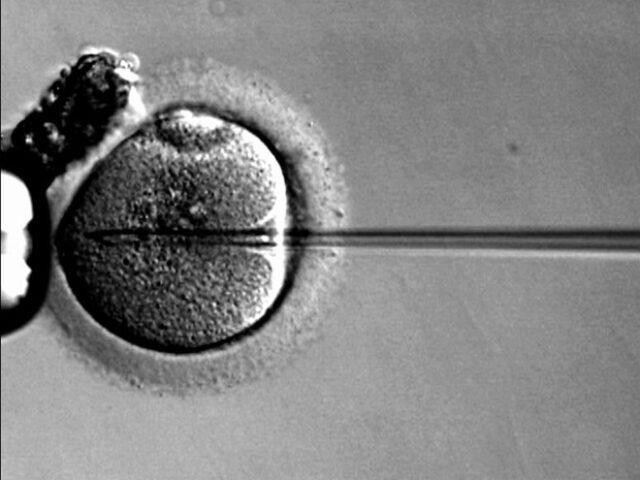 Застосування мікроголок в генній терапії захворювань сітківки
